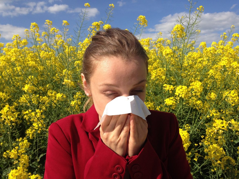 allergi skölj näsan