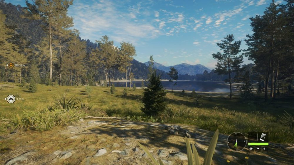 theHunter: Call of the Wild (Te Awaroa National Park): Foton / Screens från Xbox One X-versionen