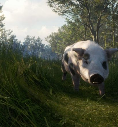 theHunter call of the wild Te Awaroa National Park recension