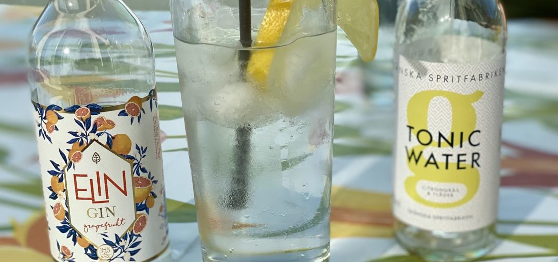 elin gin test