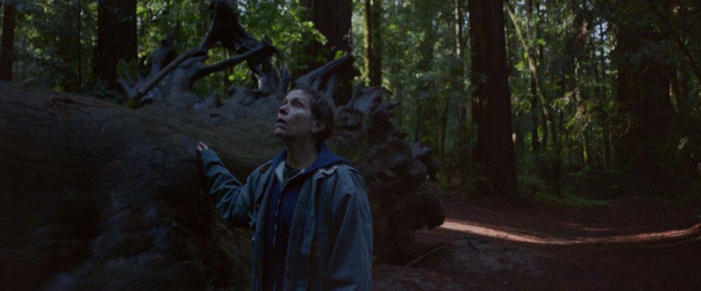 Pressbild: Copyright 2020 20th Century Studios - Nomadland - Fern in woods